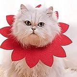 Collar de Recuperación Collar del gato collar del gato gato paño suave mascota círculo vergüenza cuello de la capilla de recuperación animal doméstico del gato collar del gato Collar Protector