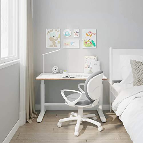 FlexiSpot Ergonomic Desk Chair for Kids Children Kids' Desk Chairs Sit-Brake Computer Home School Study Swivel Adjustable Height Gray