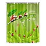 LB Marienkäfer grüne Blätter Duschvorhang für Bad Duschvorhang mit 12 Haken wasserdicht Polyestergewebe Anti-Schimmel 150x180