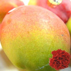 【 母の日ギフト】 メキシコ産 アップルマンゴー 3個 (1個:約350g) + カーネーション1本【5月6日〜5月9日のいずれかの日お届け】