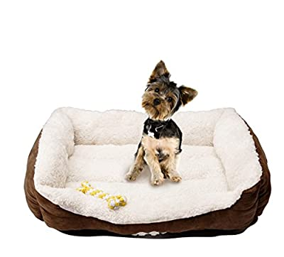 HappyCare Textiles Rectangle Pet Bed with Dog Paw Printing