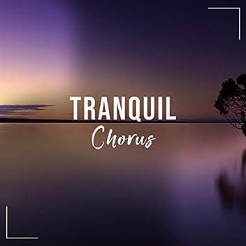 # 1 Album: Tranquil Chorus