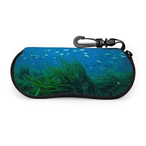 Carneg Tragbare Seegras Fisch Sonnenbrille mit Verschlussschnalle Soft Bag Ultraleichtes Tauchgewebe Reißverschluss Brillenetui