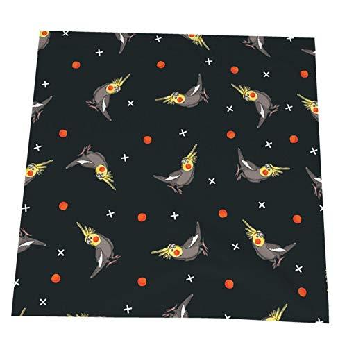 Ye Hua Cockatiel Pattern Tischsets, hitzebeständige Tischsets Fleckenresistent Anti-Rutsch-Waschbar Buntes 2er-Set
