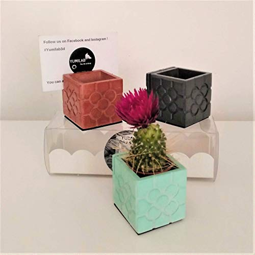 3 Mini floreros tarjetero Flor de Bilbao, Porta nombre Bilbao, Porta Foto Bilbao, mini macetas, colores personalizados, baldosa flor de Bilbao