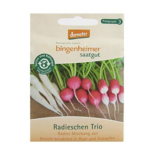 Bingenheimer Saatgut Radieschen Trio demeter bio für ca. 3 m²