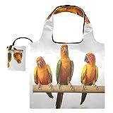 Bolsas de compras reutilizables – Sun Conure Parrot bolsa plegable grande y duradera de tela de reciclaje con bolsa