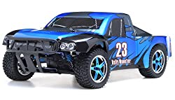 Exceed RC Electric Rally Monster Truck