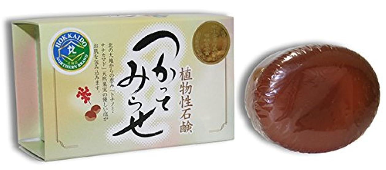 刻むエスニック否定する植物性石鹸 つかってみらせ ボディ用石鹸(90g×1個)