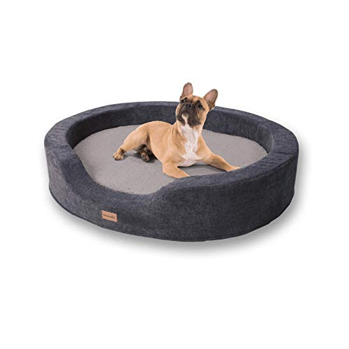 brunolie Lotte ovaler Hundekorb in Grau, waschbar, orthopädisch und rutschfest, kuscheliges Hundebett mit atmungsaktivem Memory-Schaum, Größe L 100 x 80 cm