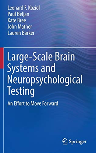 Large-Scale Brain Systems and Neuropsychological Testing: An Effort to Move Forward (Springerbriefs in Neuroscience)