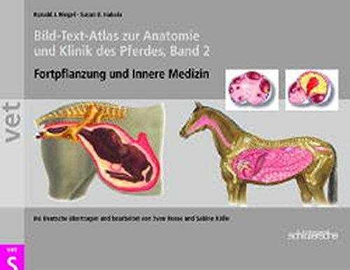 Bild-Text-Atlas zur Anatomie und Klinik des Pferdes 2: Fortpflanzung und Innere Medizin: BD 2
