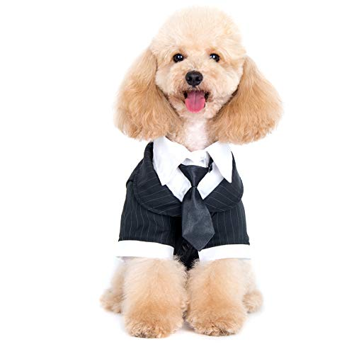 Alfie Pet - Oscar Formal Tuxedo with Black Tie and Red Bow Tie - Color: Black, Size: Large