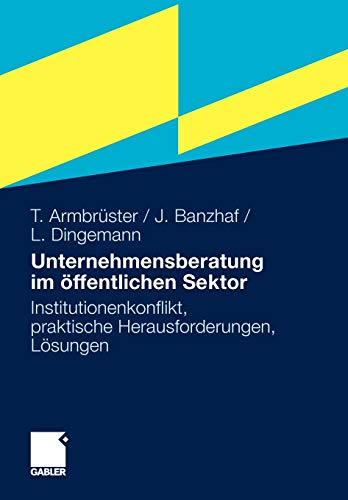 Unternehmensberatung im öffentlichen Sektor: Institutionenkonflikt, praktische Herausforderungen, Lösungen