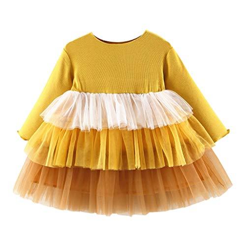 ZOREFINE ? Vestido de Niñas Otoño e Invierno Falda de Tutú de Manga Larga Falda de Malla de Cuello Redondo Vestido de Princesa de Flores de Pastel