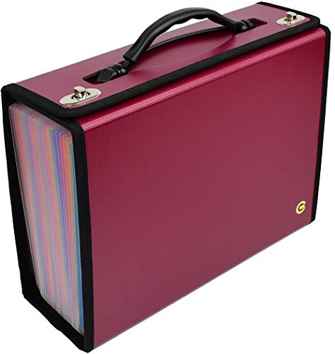 Accordian File Organizer | 24 Pockets | Expanding File Folder | Letter, A4 Size File Box | Premium Durable Handle for Buiness | Office | School | Home (Burgundy with Color Pockets)