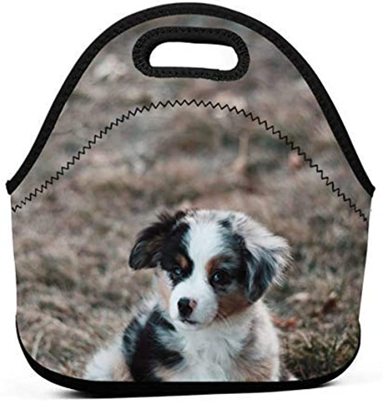 Blue Australian Shepherd Puppy Sitting On Green Grass Neoprene Lunch Bags Lunch Tote Bags For Women For Work School Lunch Boxs For Kids Girls Picnic Lunch Bag