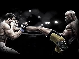 D6698 Anderson Silva Kick Vitor Belfort Spider MMA Martial Arts 32x24 POSTER