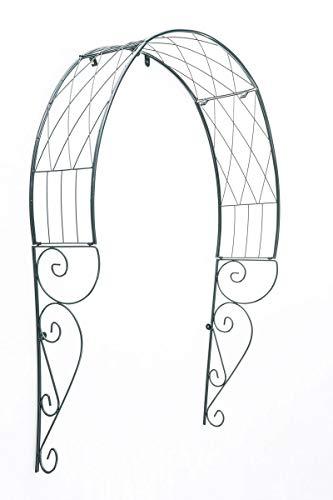 CLP Arco per Rampicanti da Appendere alla Porta in Metallo I Arco Porta Ingresso Decorativo Rose Trattato E Verniciato in Verde, Colore:Verde