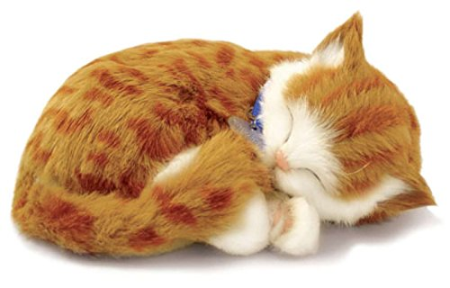 Perfect Petzzz Gato Orange Tabby de peluche, que respira