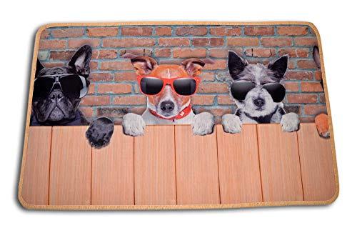 Centesimo Web Shop Tappeto Gommato Antiscivolo Multiuso Tappetino Passatoia Cucina Cuccioli Animali Cane Cani - Beige - 50x80 cm