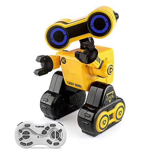 JJRC R13 CADY WIRI Smart RC Robot (Programmable & Voice Control)