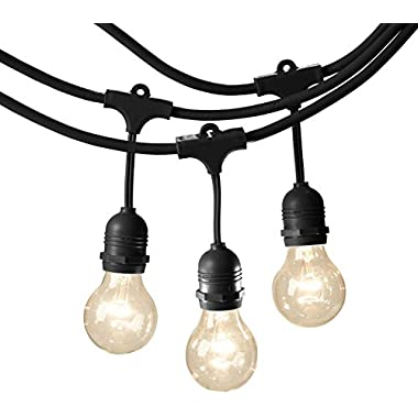 AmazonBasics Weatherproof Outdoor Patio String Lights G60 Bulb, Black, 48'
