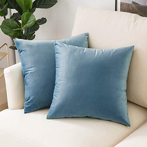 Woaboy Pack of 2 Velvet Throw Pillow Covers Decorative Pillowcases Solid Soft Cushion Covers Pillow Case Square Cojines for Couch Living Room Sofa Bedroom Car 22x22 inch 55x55cm Light Blue