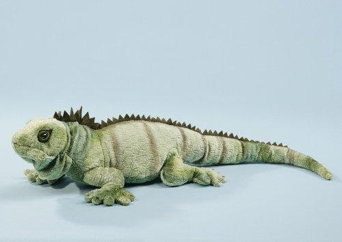 EBO 60179 - Leguan, 64cm grün marmoriert