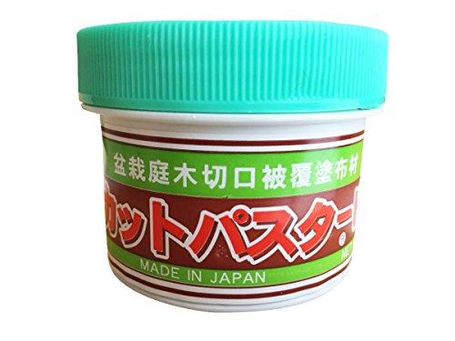 CUTPASTER Bonsai Cut Paste Too 160g (Brown)