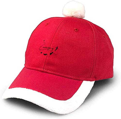 Never Give Up Christmas hat Party Hats Adjustable Santa hat Comfort Double Liner for Adults and Kids