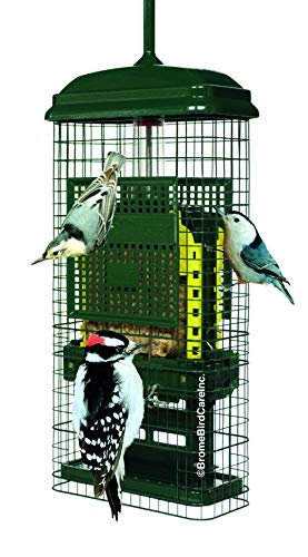 Squirrel Buster Squirrel-Proof Bird Feeder, 2 Suet Trays, 2 Crumb Ports, Green