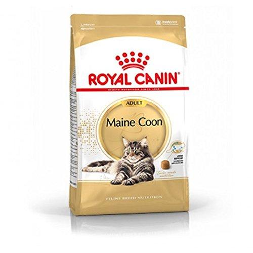 Royal Canin 55186 Maine Coon 2 kg - Katzenfutter