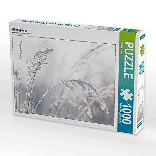 CALVENDO Puzzle Wintergräser 1000 Teile Lege-Größe 64 x 48 cm Foto-Puzzle Bild von Tanja Riedel
