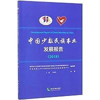 中国少数民族事业发展报告(2018)