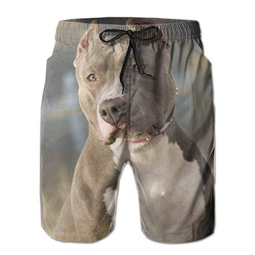 Jiger zwemshort voor heren, bulldog, zwembroek met tassen