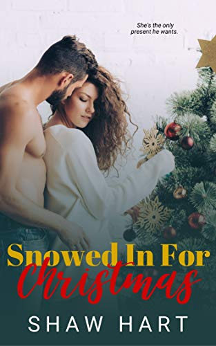 Snowed in for Christmas (A Forever Safe Christmas Book 16)