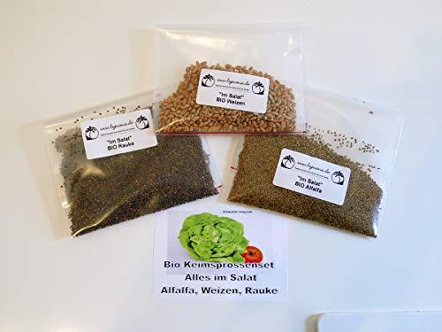 Leguana Handel GmbH - Set di pioli biologici per germinazione