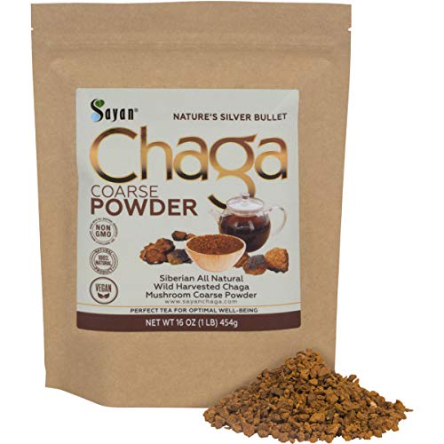 Sayan Siberian Raw Ground Chaga Powder 1 Lbs (454g) - Wild Forest Mushroom Tea, Powerful Adaptogen Antioxidant Supplement - Support for Immune System, Digestive Health and Inflammation Reduction