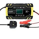 E-More Car Battery Charger, 12V 24V Battery Charger & Maintainer Delivers, Fully Automatic Battery Charger with LCD Screen and Microprocessor Mode Suitable for AGM GEL SLA Wet Batteries