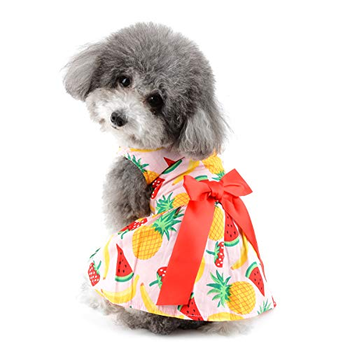 Ranphy - Vestido para perros pequeos, para mujer, diseo de princesa, color vivo y colorido