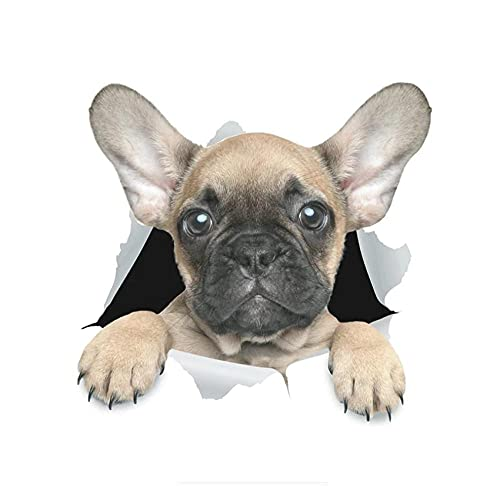 MDGCYDR Pegatinas Coche 14 Cm * 13,4 Cm Divertido Perro 3D Lindo Bulldog Francés Pegatina De Coche Accesorios Exteriores De Automóviles Calcomanías De Vinilo para Pared Nevera Inodoro,