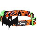 Blueberry Pet Halloween Mystery Disguise Classic Designer Dog Collar with Decoration, Large, Neck 45cm-66cm, Holiday Collars for Dogs