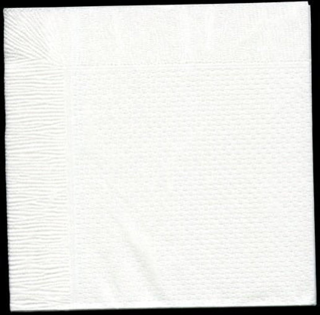 宿題をするフリルやけど【10パックまとめ買い】カラー4折紙ナプキン「白無地」(1000枚)