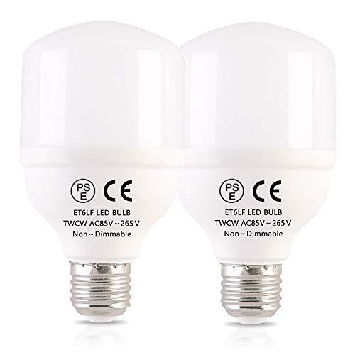 LED電球 E26 led 昼白色 T形 100W形相当 13W 1300ルーメン 全方向タイプ EFD25・EFD15 パルックボール 断熱材施工器具対応 斜め付き 横挿し向け専用 密閉形器具対応 PSE認証取得 Best life(2個入)