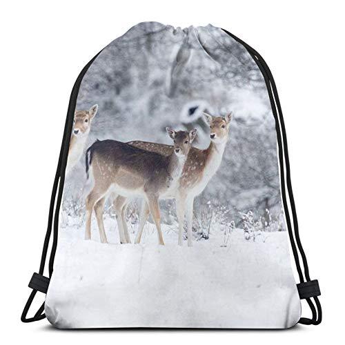 Affordable shop Fallow Deer In Knole Park, Inglaterra mochila con cordón de cordón, ligera, gimnasio, viajes, yoga, bolsa de hombro para senderismo, natación, playa
