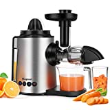 Juicer Machines 2 in 1 Slow Masticating Citrus Juicers Antioxidant Mute and Reverse Function Cold Press Juice Extractor with Juice Cup & Brush for Fruits and Vegetables