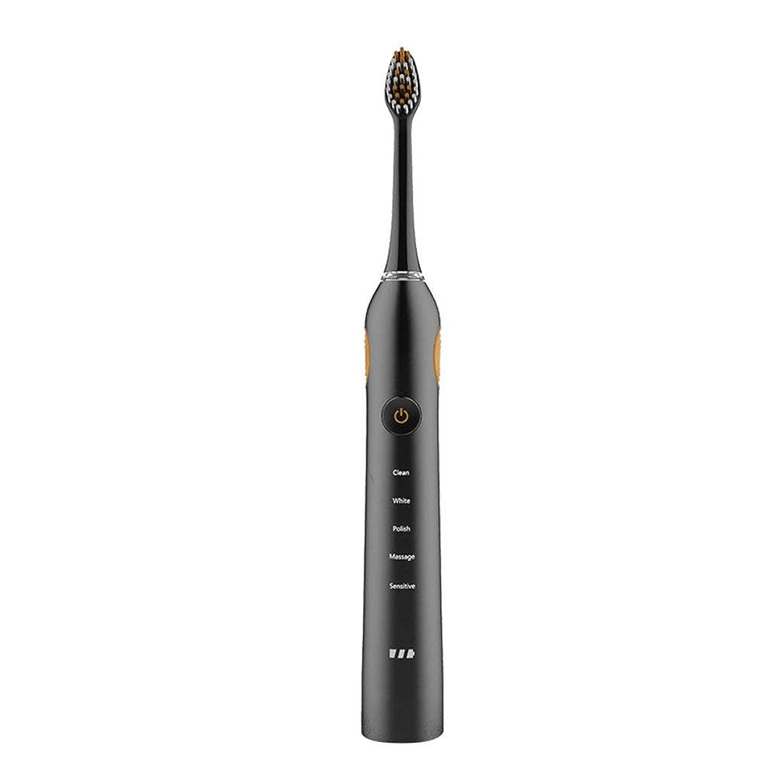 布パラメータ四回音波歯ブラシIPX7防水電動歯ブラシ低ノイズ電動歯ブラシ2交換ヘッド5ブラッシングモード(色:B)