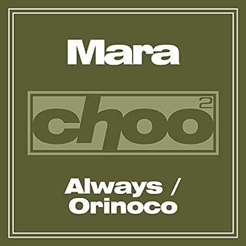 Always & Orinoco