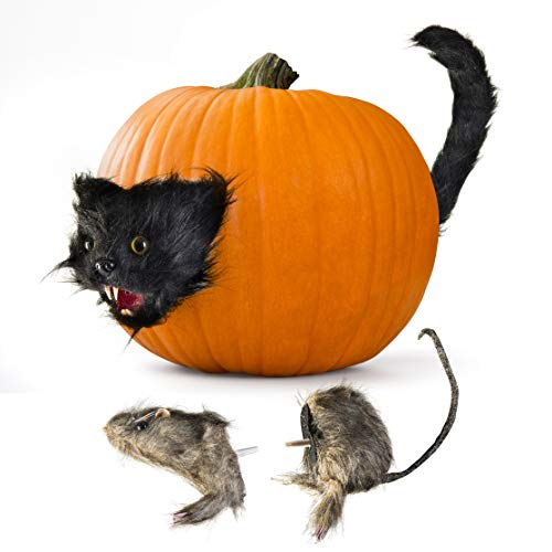 Prextex Halloween Creepy Scary Cat and Furry Rat Heads & Tails Spooky Pumpkin Prop Décor Fun & Creepy Jack-O-Lantern Display